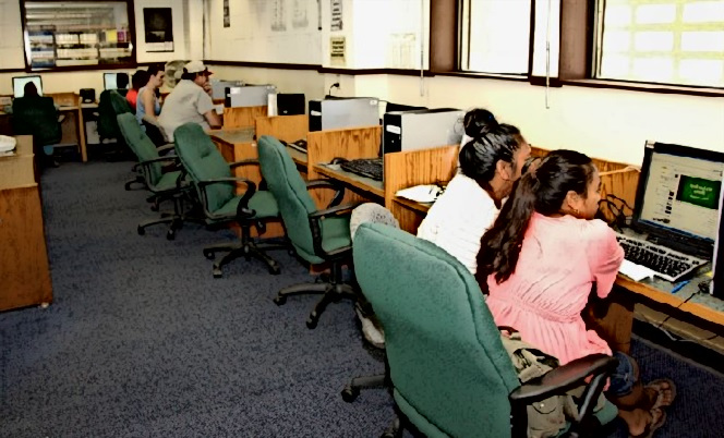 People use computers in a library.